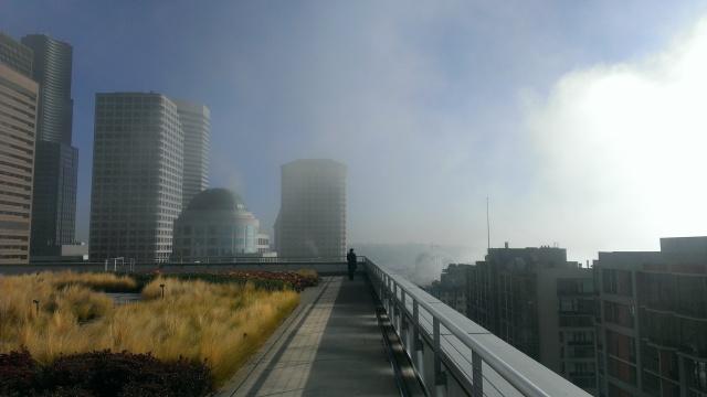 Fog rolls off Elliot Bay.
