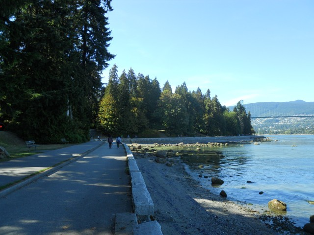 Stanley Park has over 8 million visitors per year.