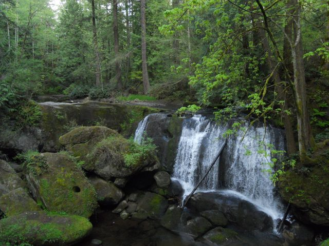 Whatcom Falls Parks, one of several Bellingham parks I visited.
